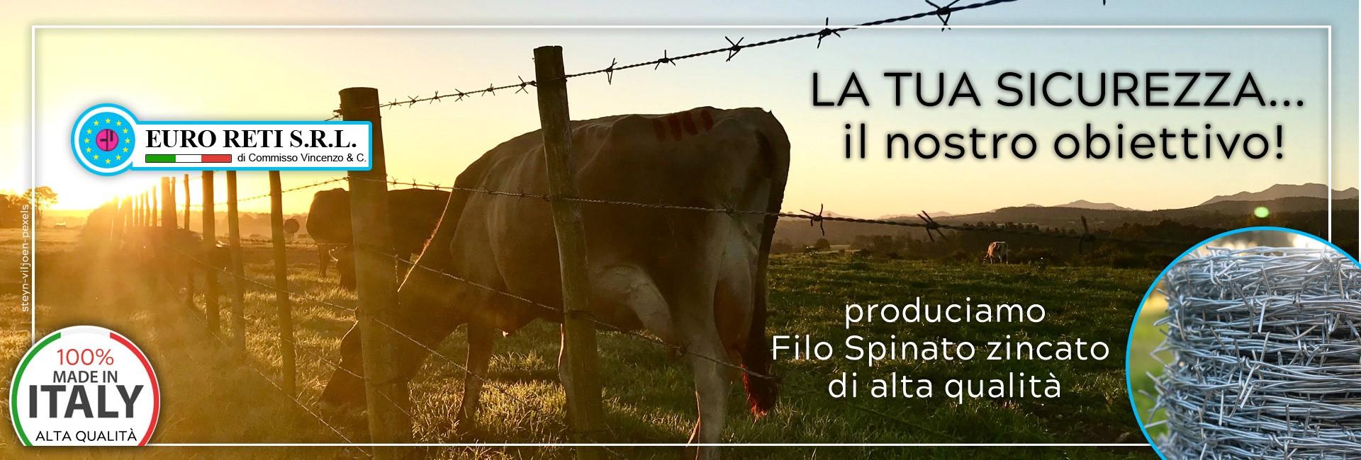 Filo Spinato zincato - Tipo IOWA METRI 200