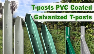 T-post PVC Coated Galvanized T-posts